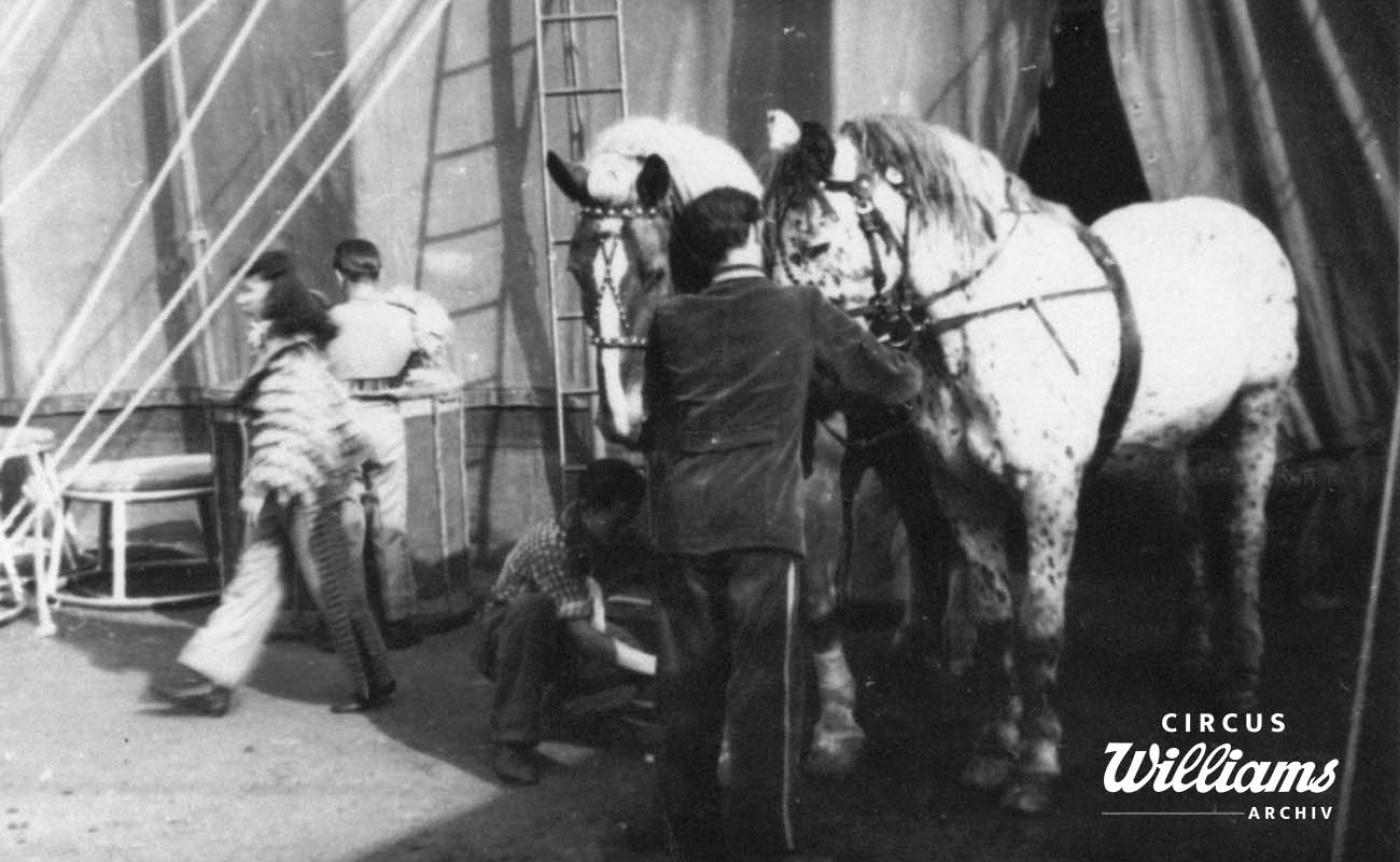 1954 Tourneebilder